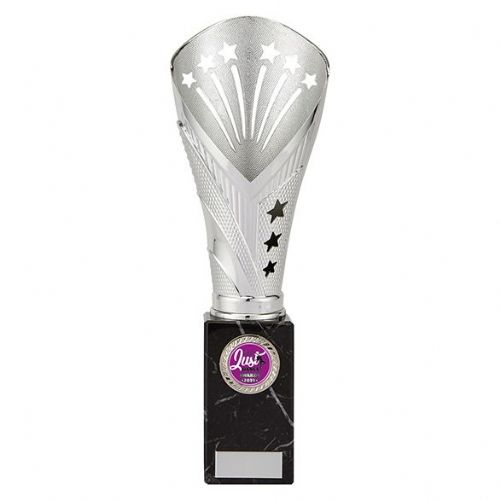 All Stars Large Rapid Trophy Silver 285mm